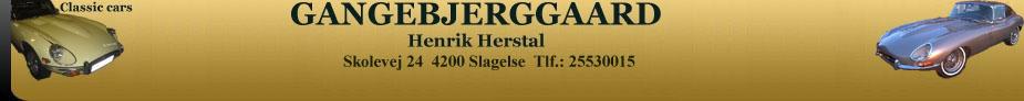gangebjerggaard.dk